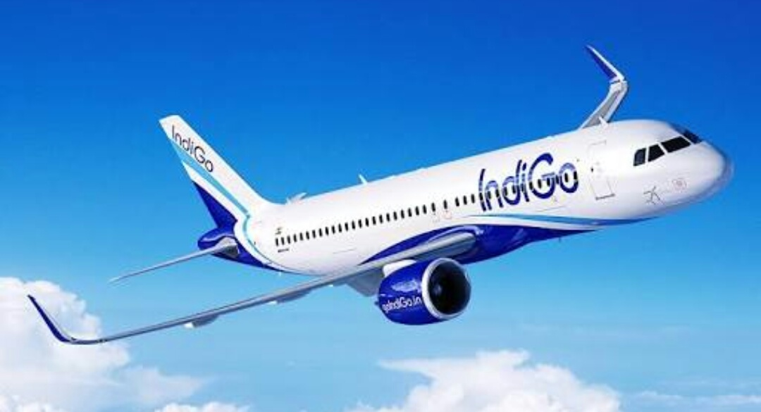 Indigo Airlines Refuse To Issue Boarding Passes Of Children Without