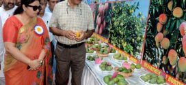 Bukhari, Priya inaugurate 'Mango Show' at Abhinav Theatre